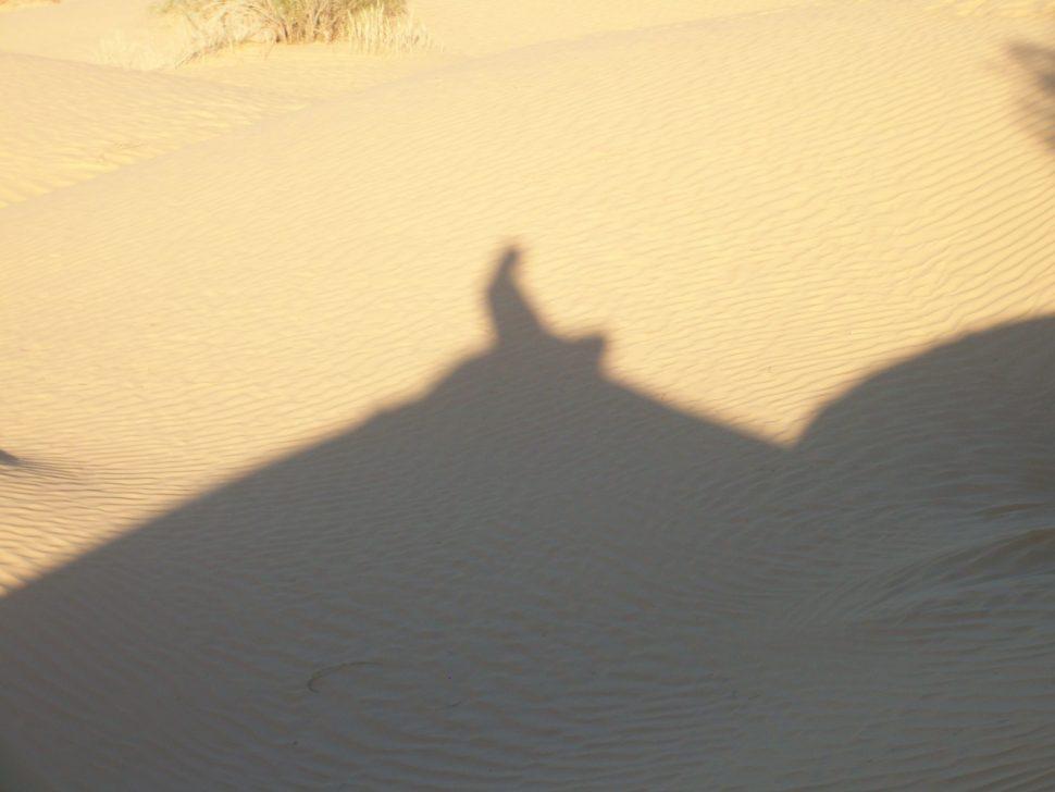 stín poutníka vpoušti - vision quest 2014