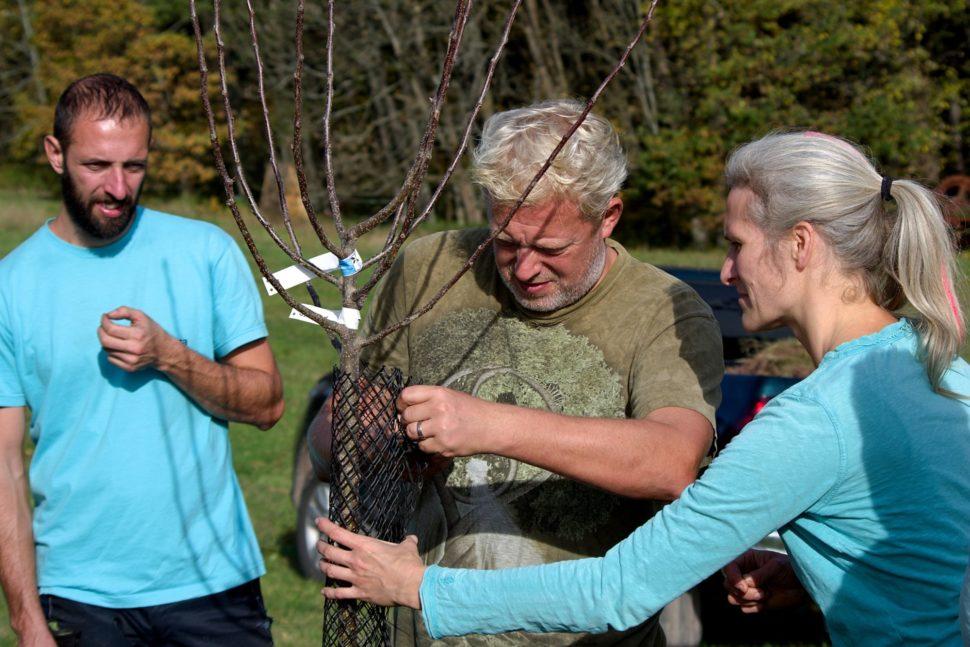 Sázení stromu naJanovické louce