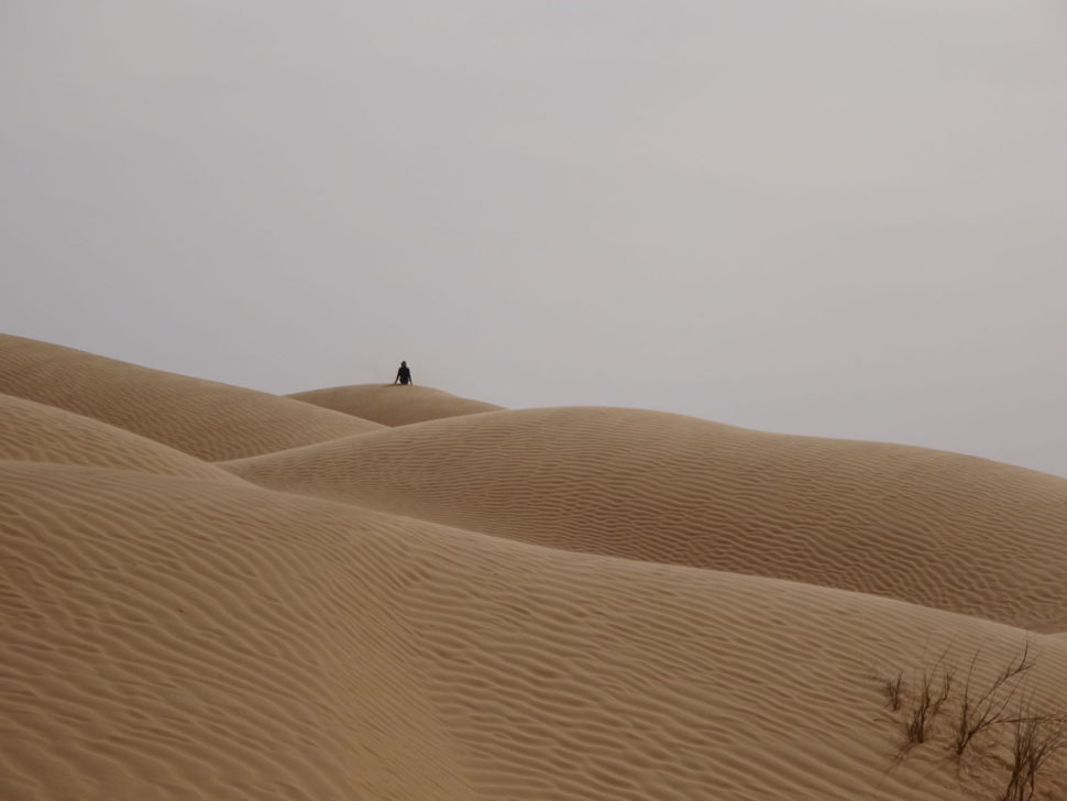 Sahara - duny napoušti